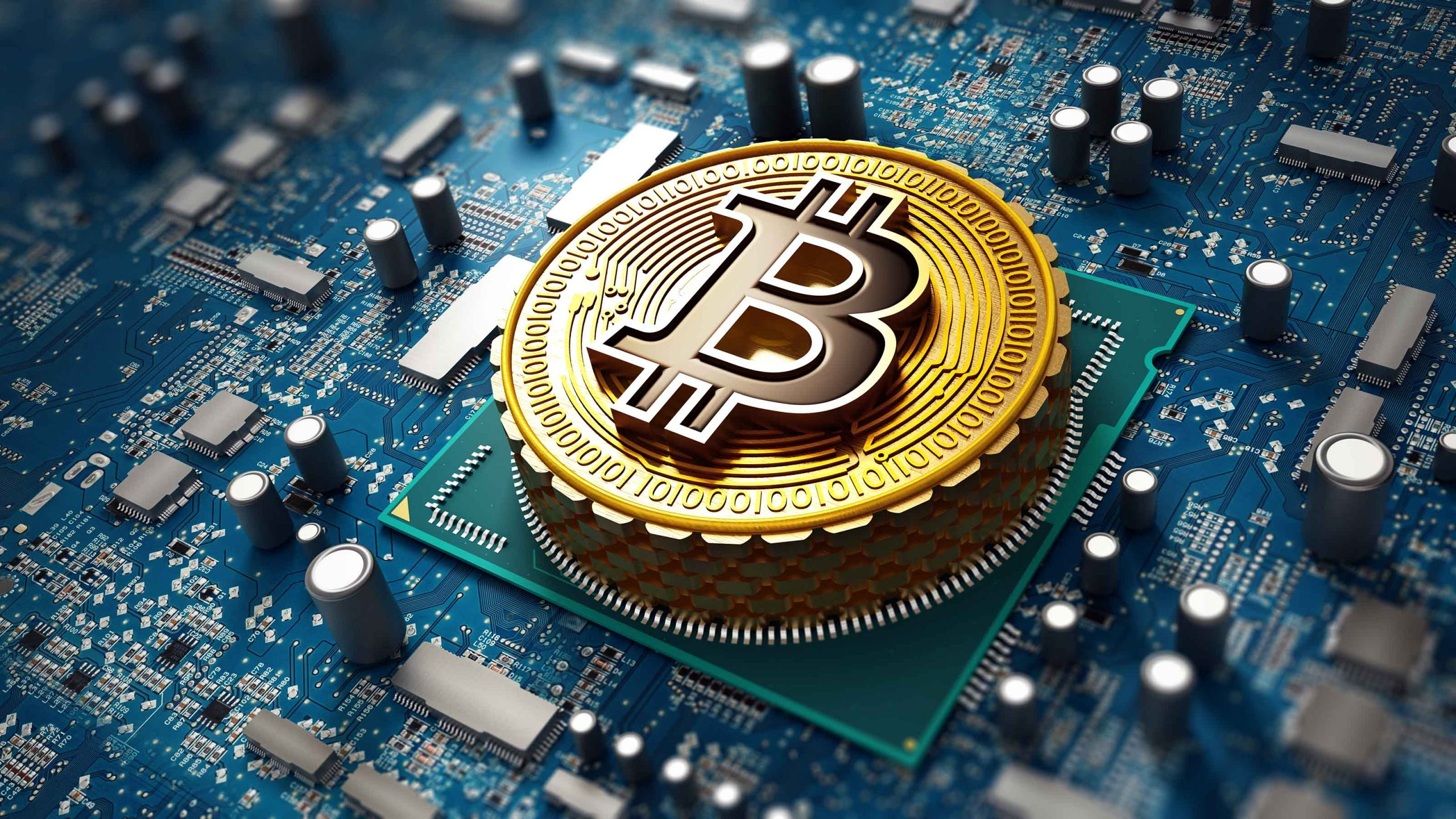 Beginners Overview to Own Bitcoin Cryptocurrency